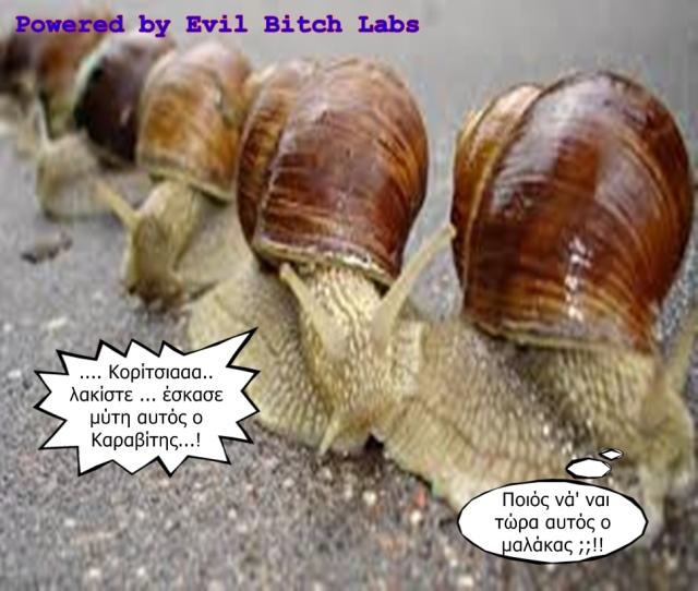snails1